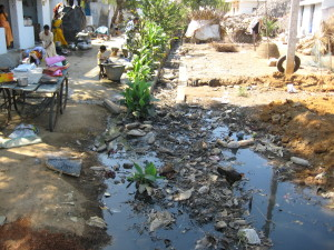 3 BT Duppada Village street Scene 2008-02-07 13.23.06